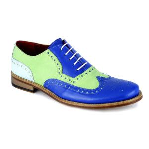 shoe-vintage-man-lion-4